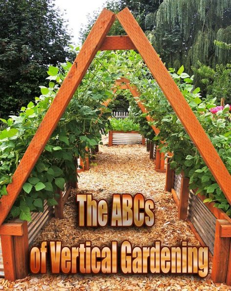 """The ABCs of Vertical Gardening is part of Beautiful garden Vegetable - Vertical gardening—also called intensive gardening—is not a new idea, but it has gained momentum in recent years with a lengthening list of ideas for how    To successfully """"grow on the vertical,"""" there are some things to bear in mind"""