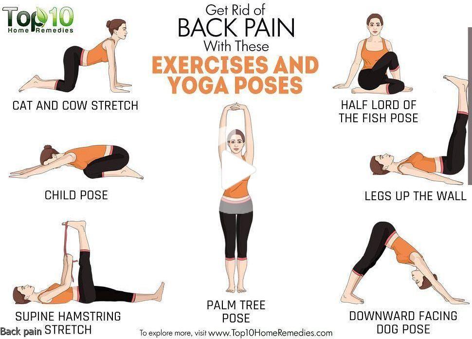 42++ Palm tree yoga pose trends