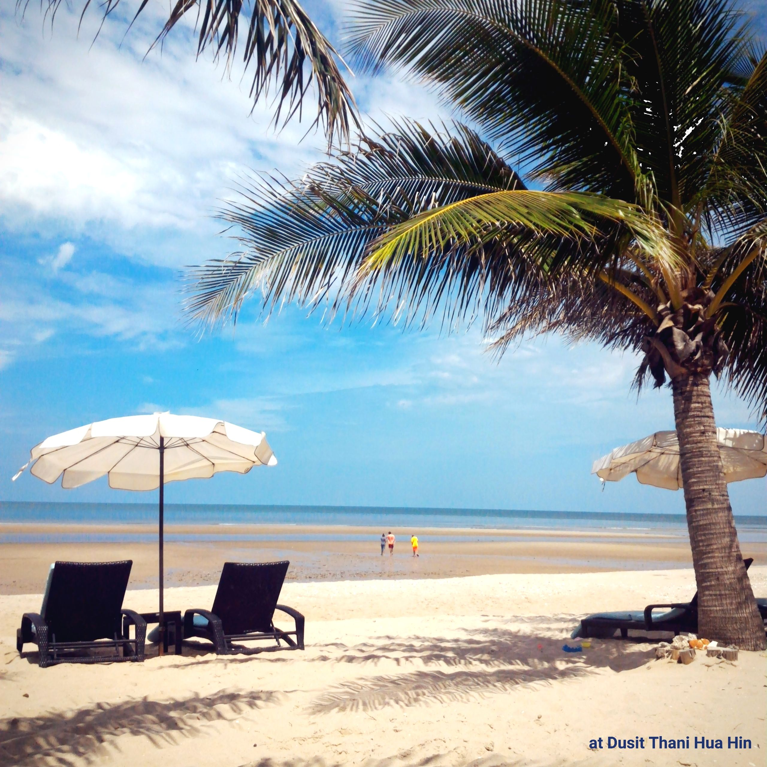 'Sunny day on the beachfront with clear blue sky', share your #staycation style with us. วันหยุดพักผ่อนกับบรรยากาศดีดีริมชายหาดกับท้องฟ้าสดใส :) #dusitjourneys #dusitmoments #dusitthani #huahin #chaam #dusitthanihuahin #snapandshare #clearbluesky #sunnyday www.dusit.com/dthh