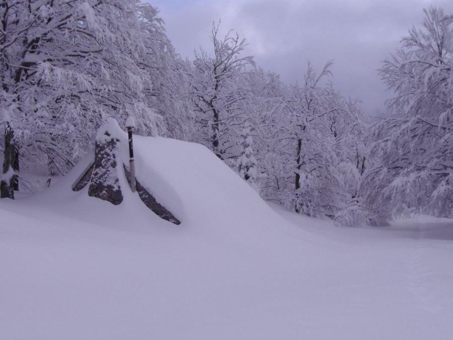 Buried cabin | Winter pictures, Winter scenes, Winter wonder