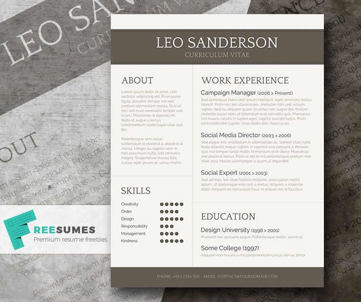 Conservative and Creative Free Word CV Template Cv template and - campaign manager resume