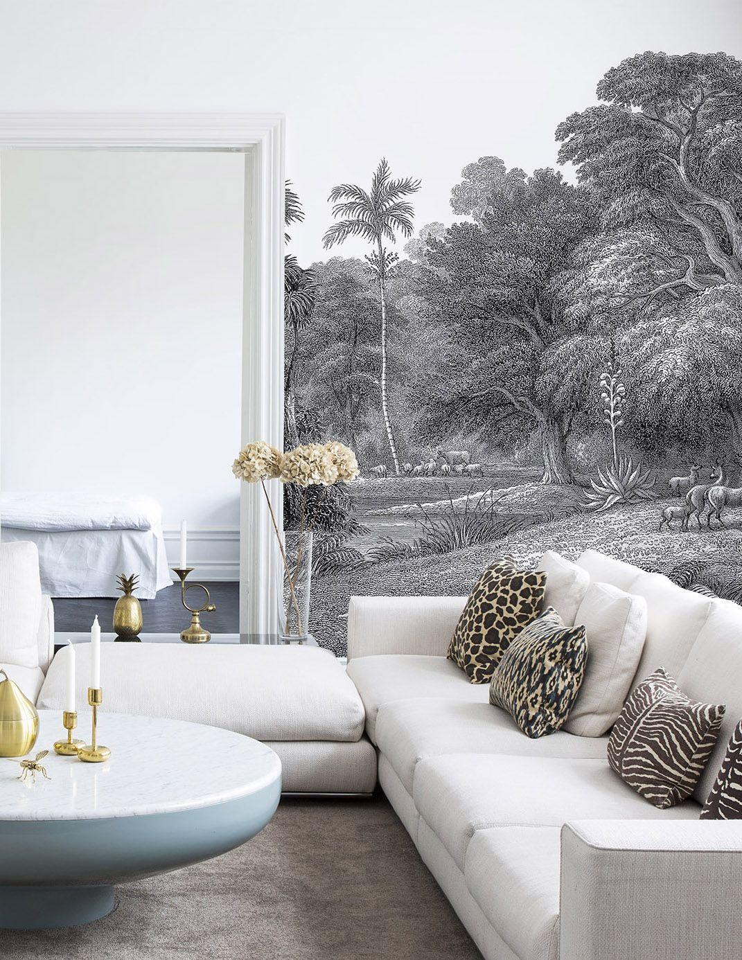 Jungle Land Avec Images Papier Peint Panoramique Couleur Mur Papier Peint