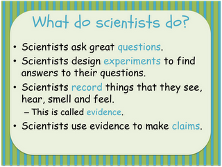 """Being a Scientist Add """"scientists look at their predictions and make conclusions on whether their predictions were correct or not correct and why this is true"""" and """"scientists think back and reflect on the evidence with new questions and/or thoughts about the experiment"""""""