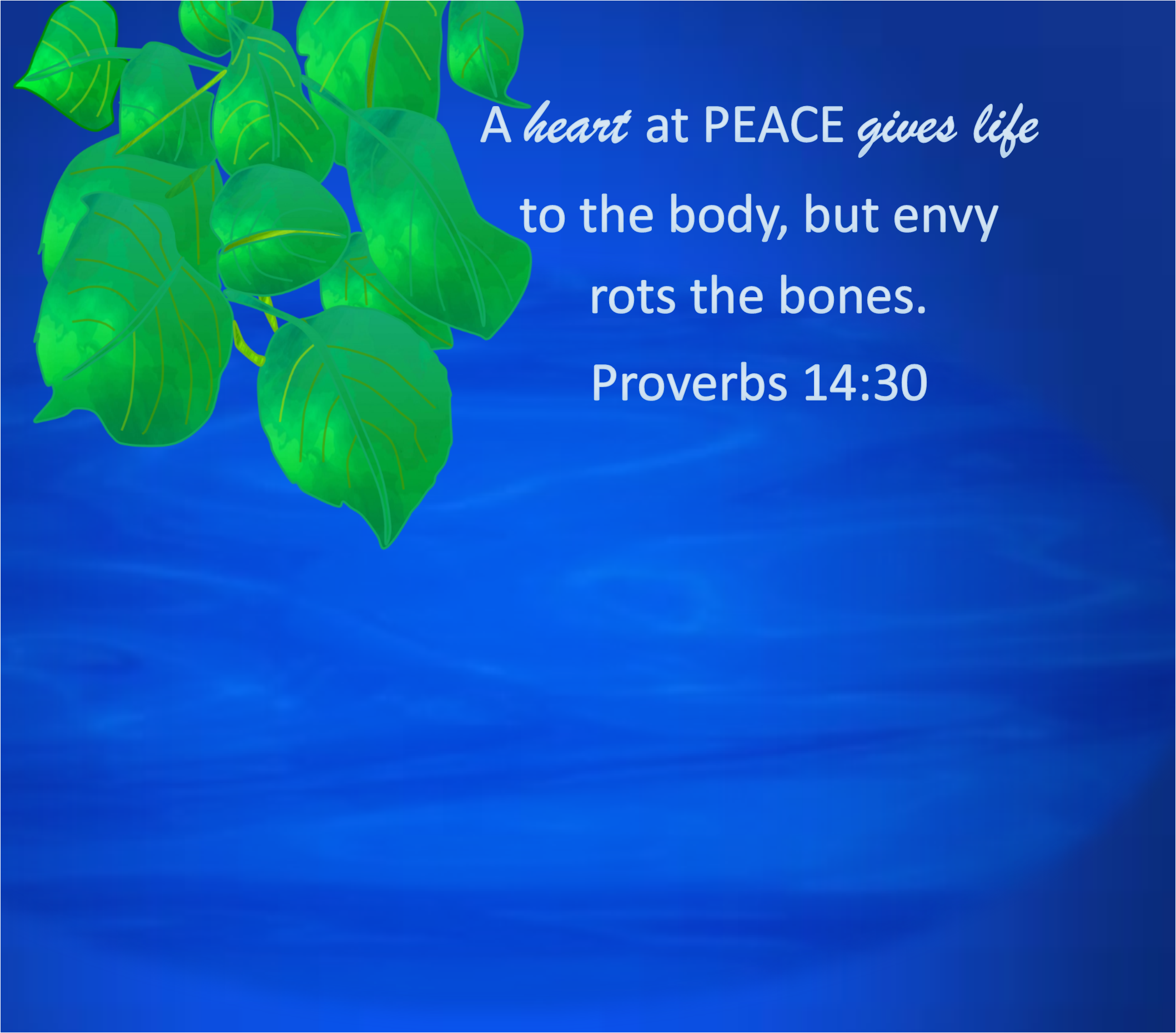 A heart at peace gives life to the body Proverbs 14:30 #peace #Shalom #calm #water #heart