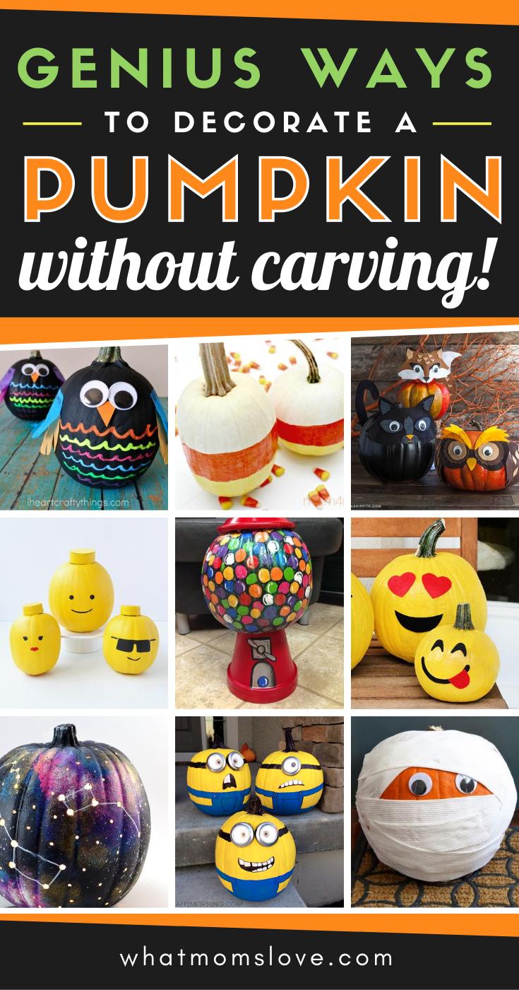 31+ Cute no carve pumpkins trends