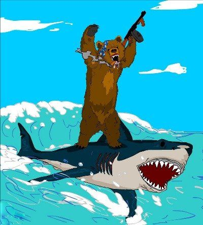 I D Love To See This As A Tattoo Funny Bears Shark Surf Art