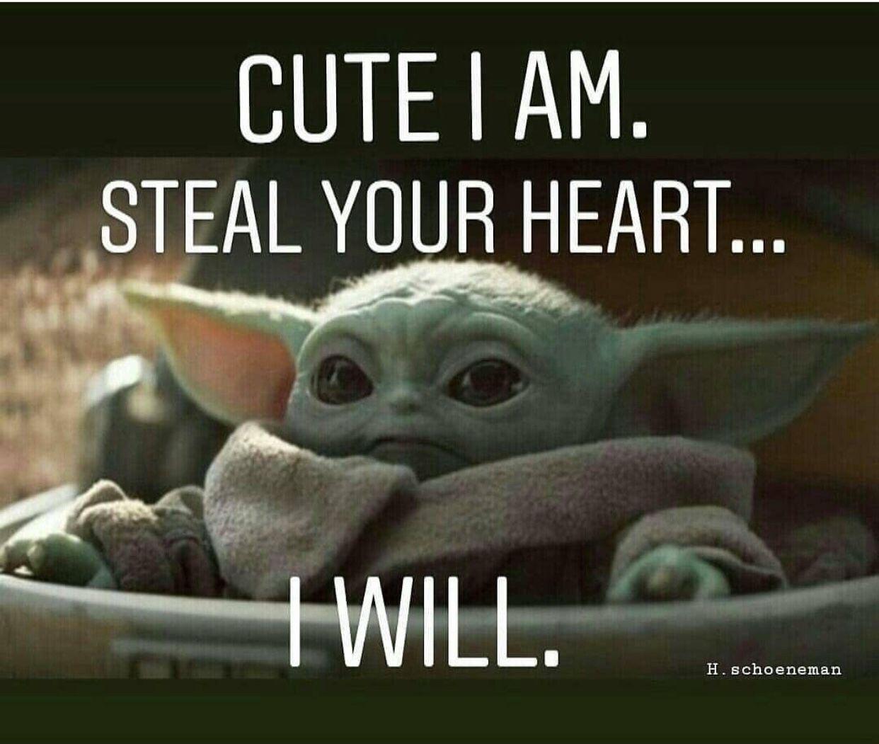 Pin By Nikola Sliwkova On Baby Yoda Yoda Funny Yoda Meme Funny Star Wars Memes