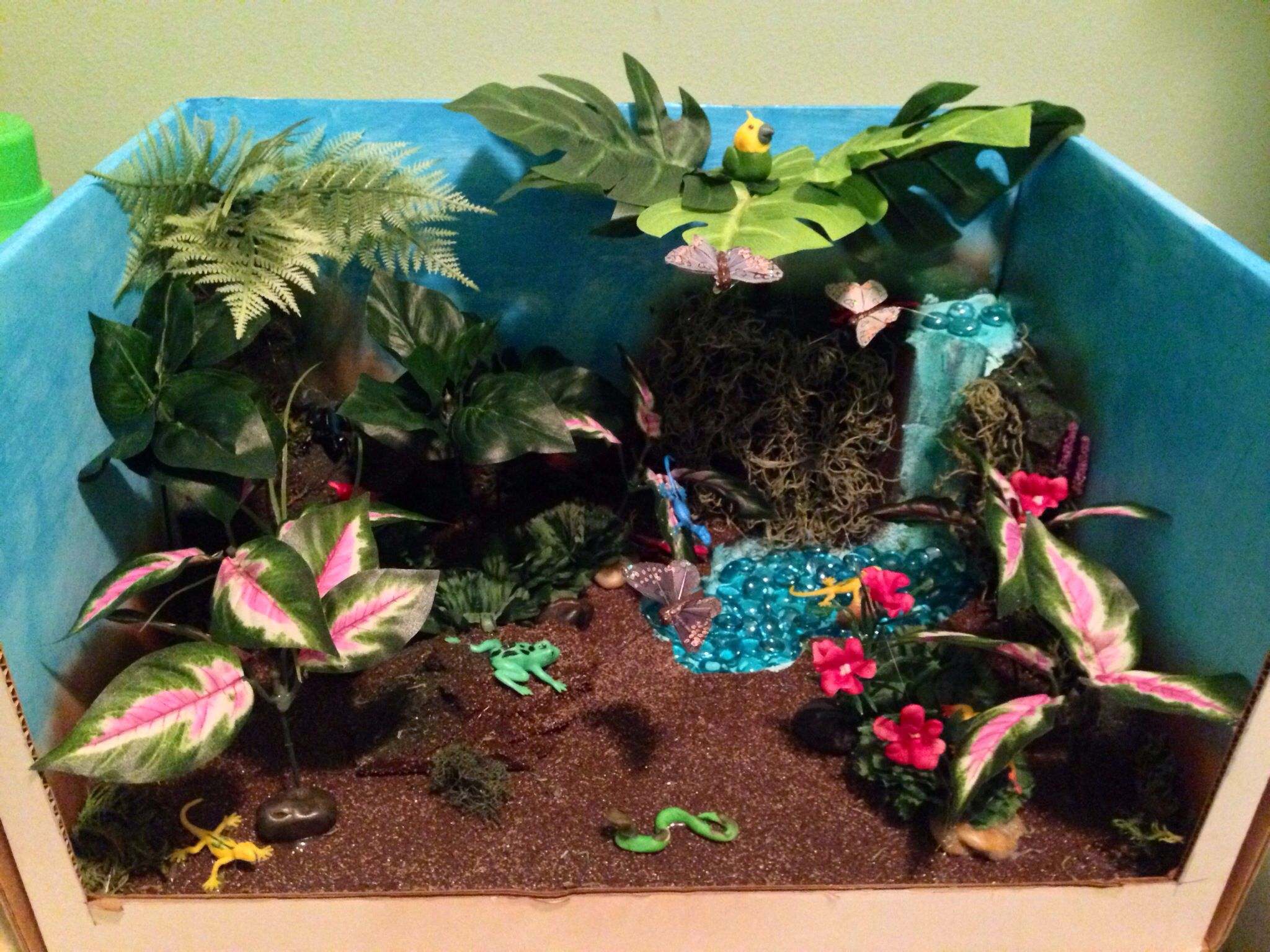 My Daughters Rain Forrest Ecosystem Project 10 All Crafts Bought At The Dollartree
