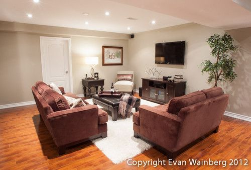Traditional Basement Photos Design, Pictures, Remodel, Decor and Ideas - page 328