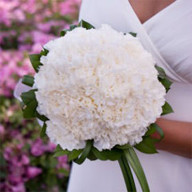 Best White Carnation Bridal Bouquet White Carnation Bouquet Carnation Wedding Carnation Bouquet