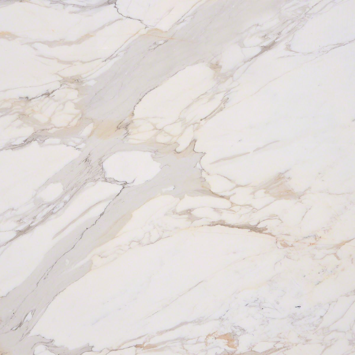 Calacatta Gold Marble Natural Stone Collection M S