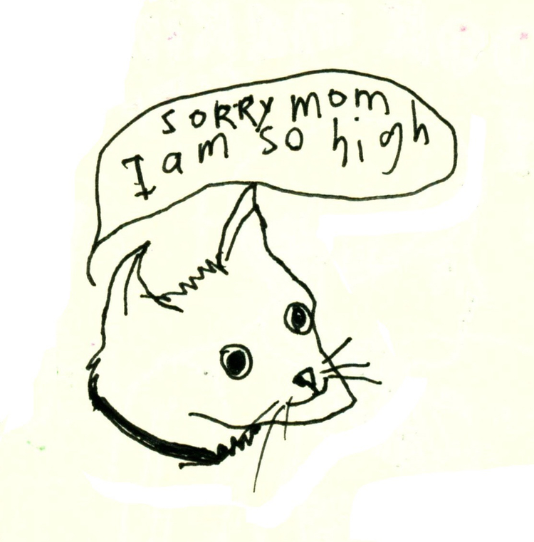 cats pets cute Art, Illustration, Drawings