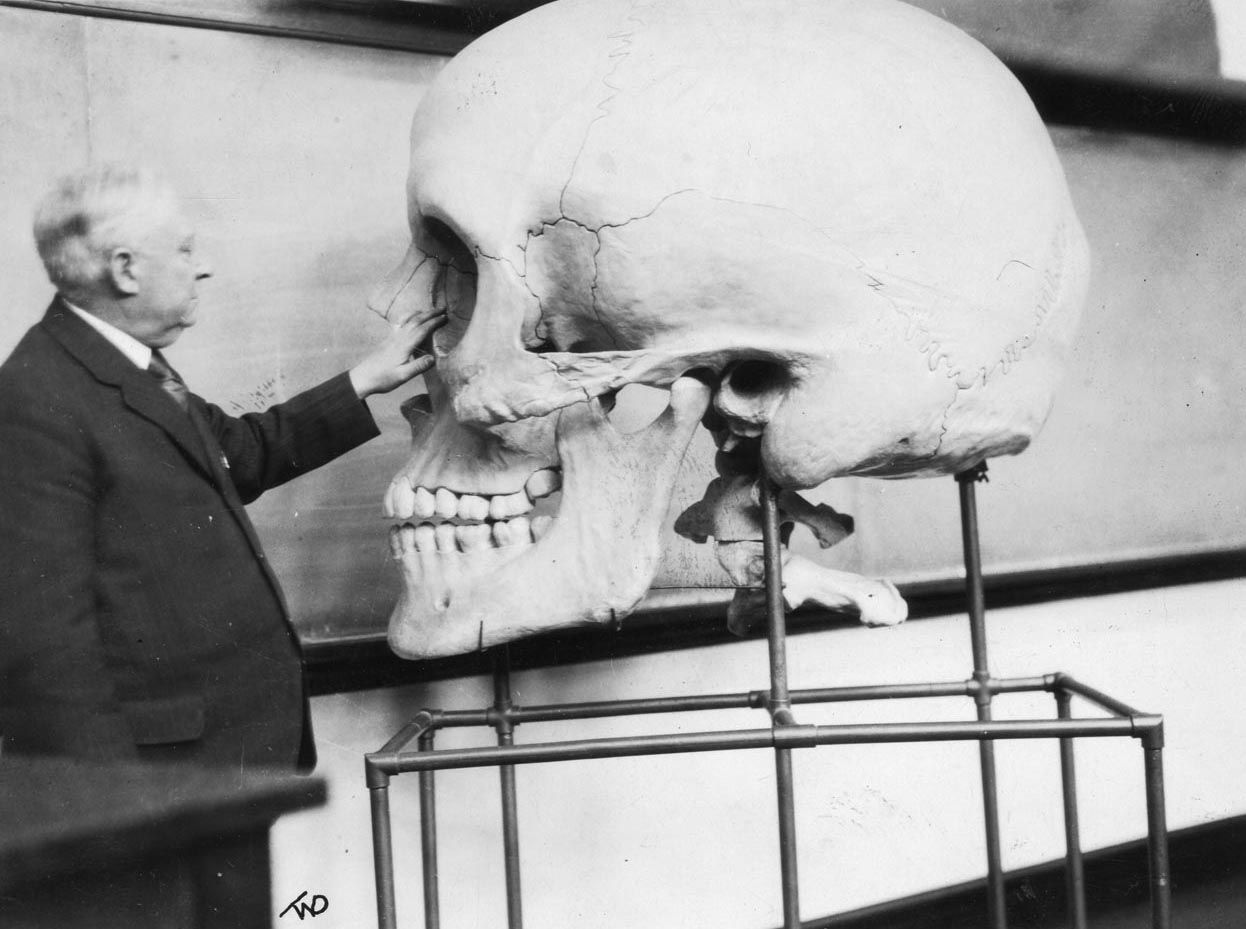 Anatomist Harris Mosher with a teaching skull, ca. 1929