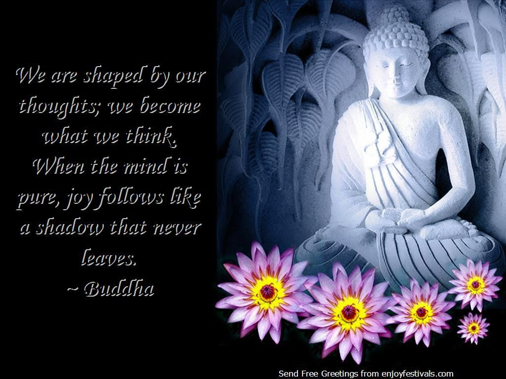 Pin by Joanne Lewis on Wise Words Buddha quote, Healthy