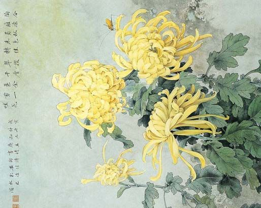 Chrysanthemum No Info On Artist Or Date Chrysanthemum Painting Painting Flower Painting