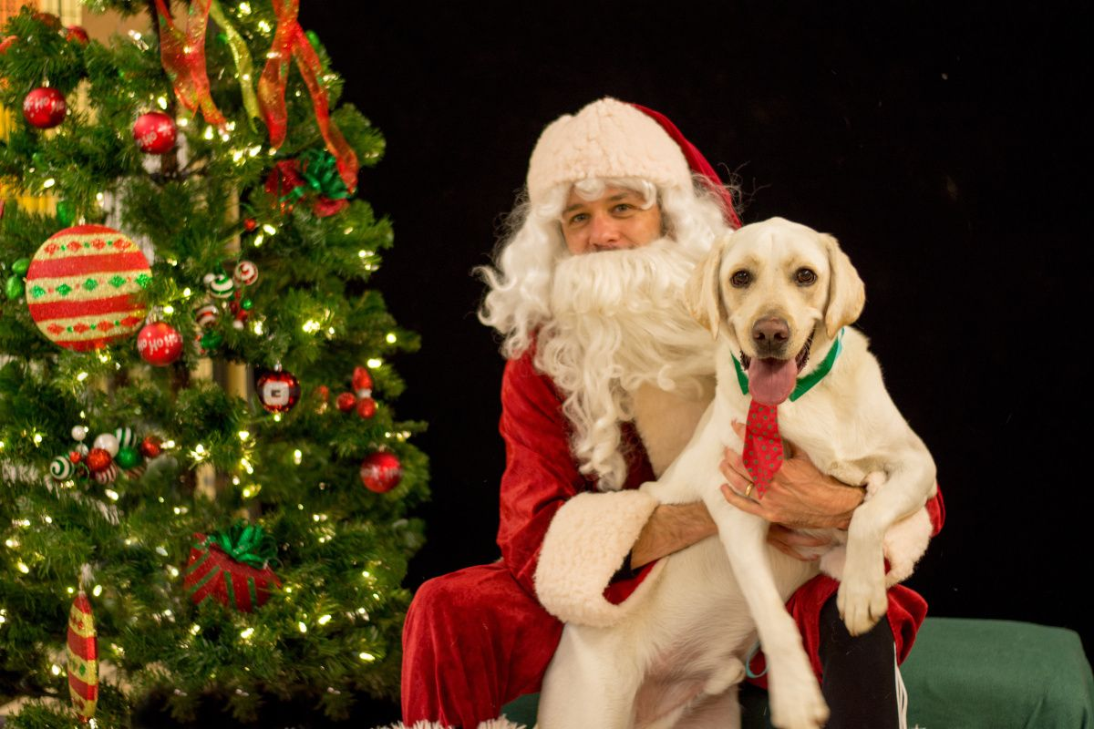 PetSmart is offering free Santa photos for you and your ...