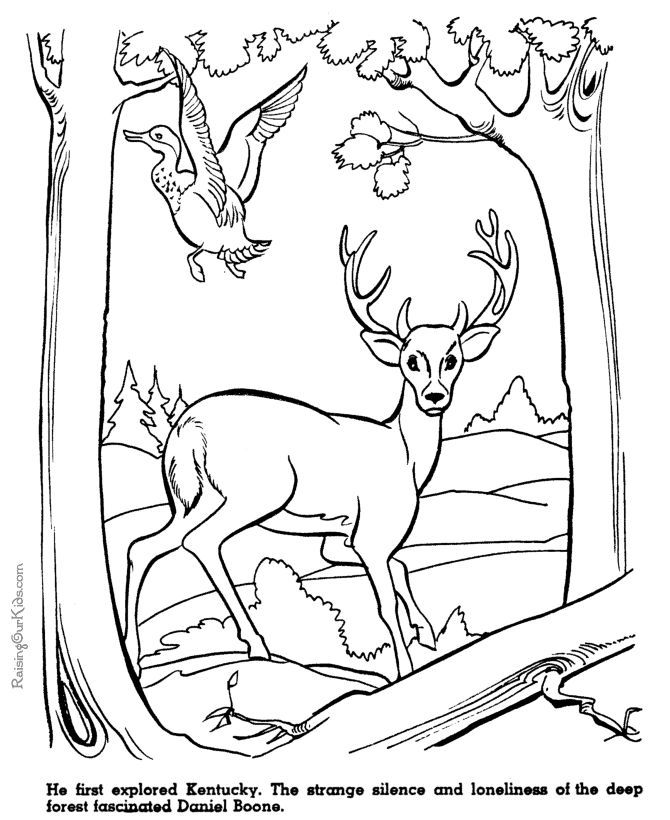 Free Printable Daniel Boone History Coloring Page For Kid