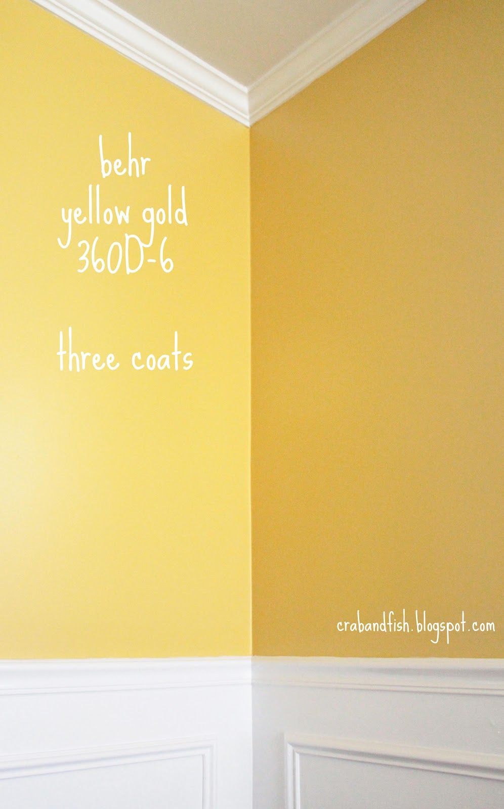 behr yellow gold 360d-6 three coats | For the Home | Pinterest ...