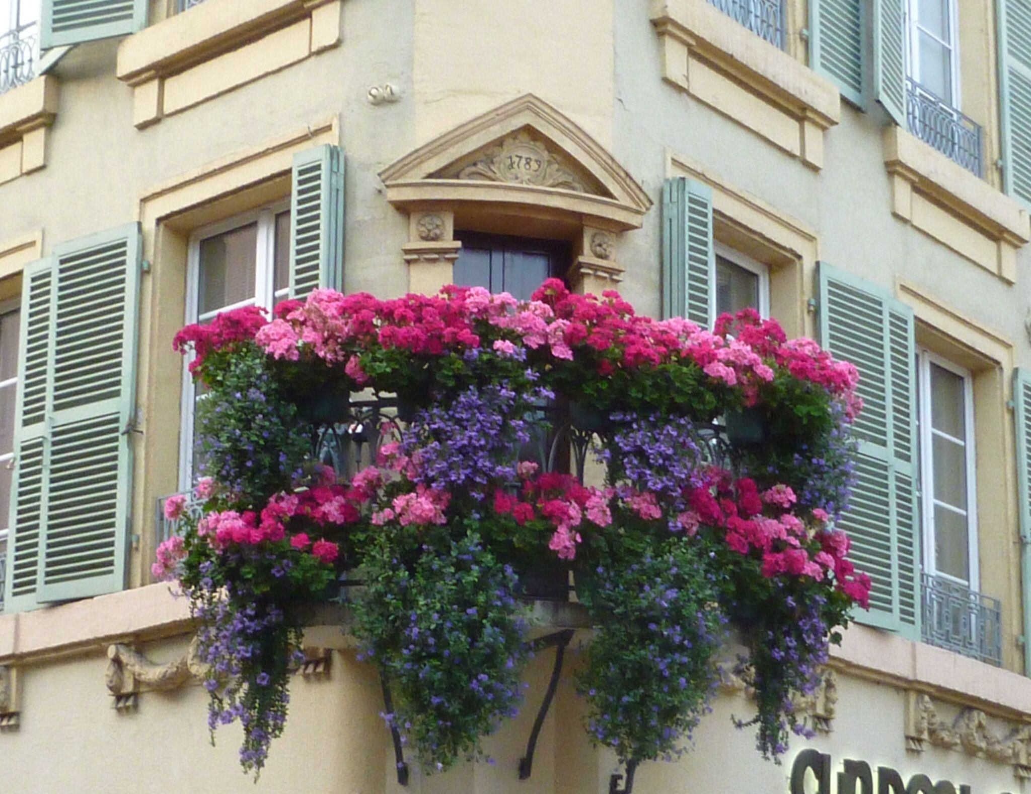 Gorgeous window boxes in Colmar France Window boxes