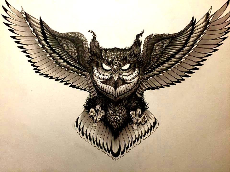Pin By ערן משרקי On Tattoo In 2020 Owl Tattoo Chest Owl Tattoo Design Owl Tattoo