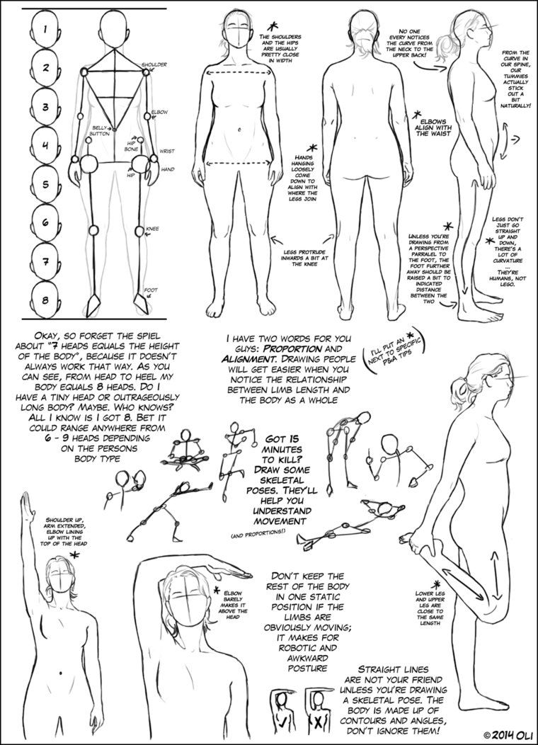 Basic Body Tutorial, by DerSketchie on deviantART. | Drawing ...
