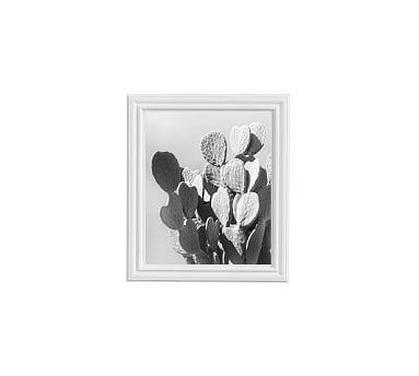 Monochrome Desert Cactus Framed Print by Jane Wilder, 11 x 13 ...