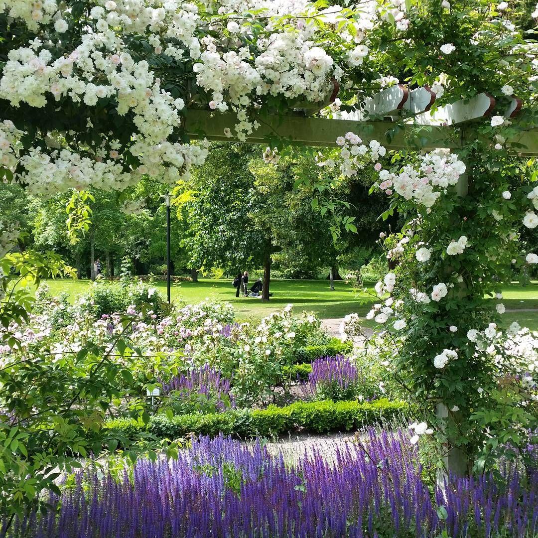 Brunnsparken i dag, magiskt vackert! #brunnsparken #ronneby | Ideas ...