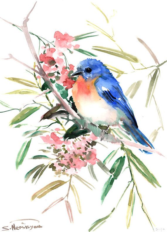 Bluebird Original Watercolor Painting 15 X11 In Bluebird And