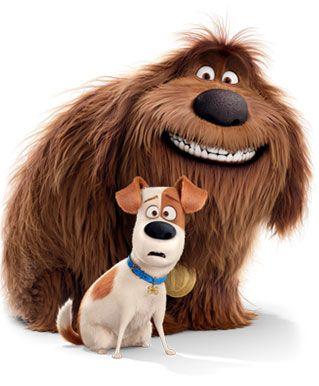 Munch Bunch Great For Growing Kids Vida Secreta Dos Animais Filme Pets Papeis De Parede Animados