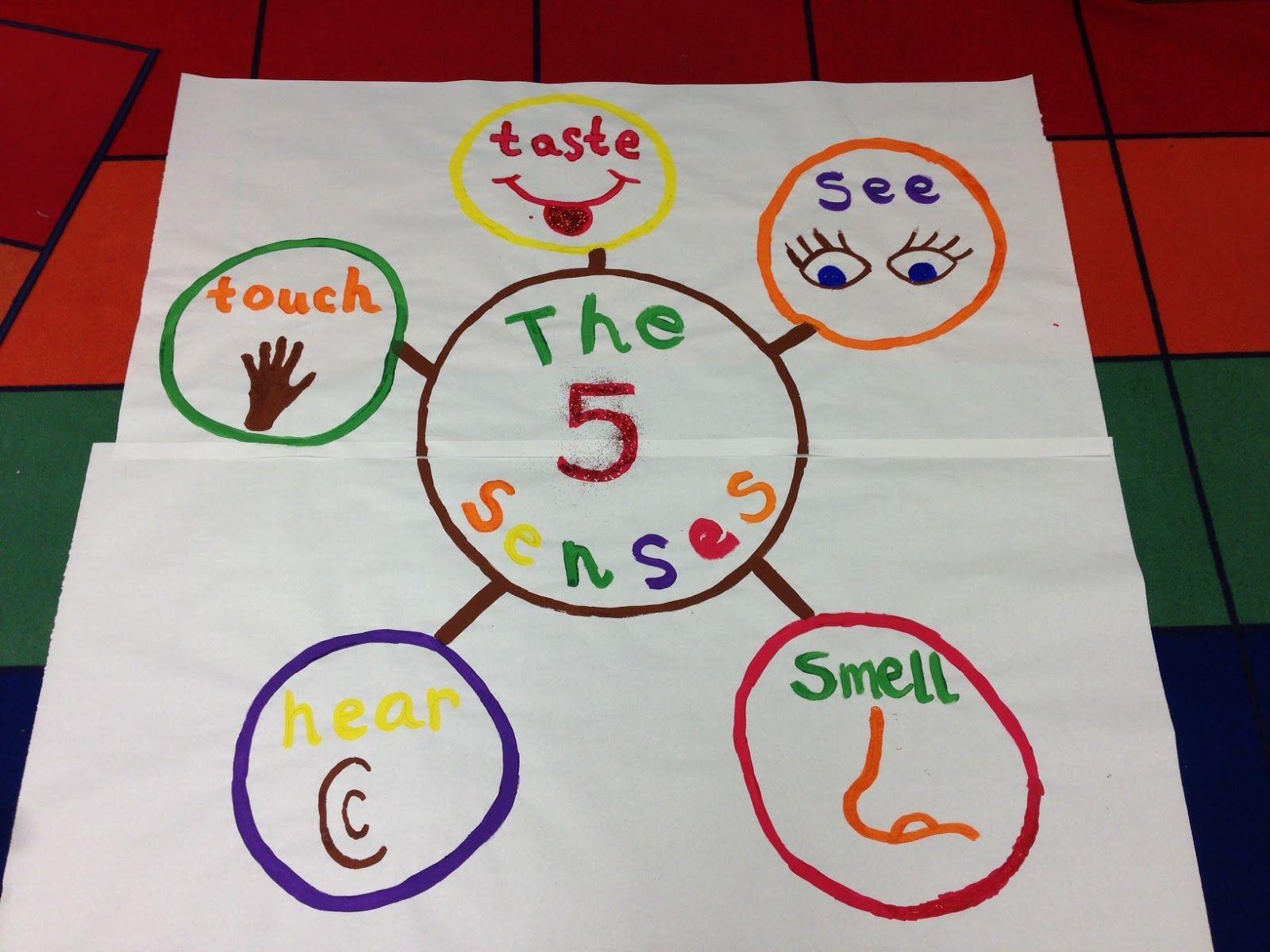 5 Senses Poster Kindergarten Smarts Senses Preschool 5 Senses Craft Kindergarten Science Projects [ 1200 x 1600 Pixel ]
