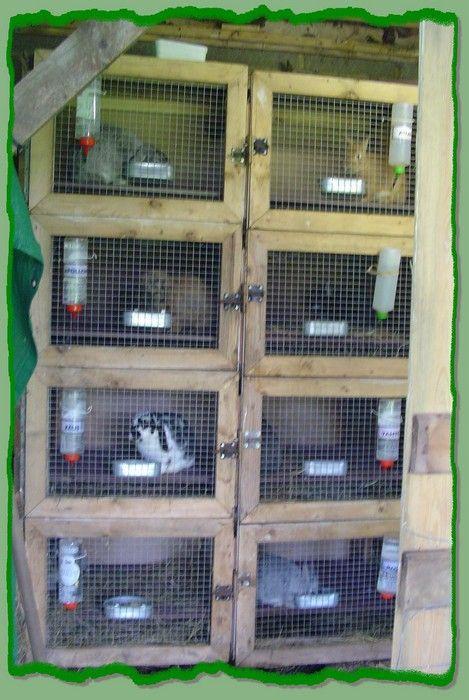 Résultats de recherche du0027images pour « cage a lapin fait maison - tour a bois fait maison