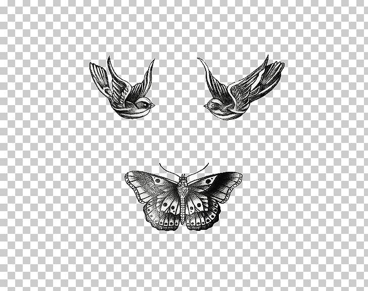 Tattoo Ink Drawing One Direction Png Black And White Butterfly Drawing Harry Harry Sty Harry Styles Butterfly One Direction Drawings Harry Styles Tattoos