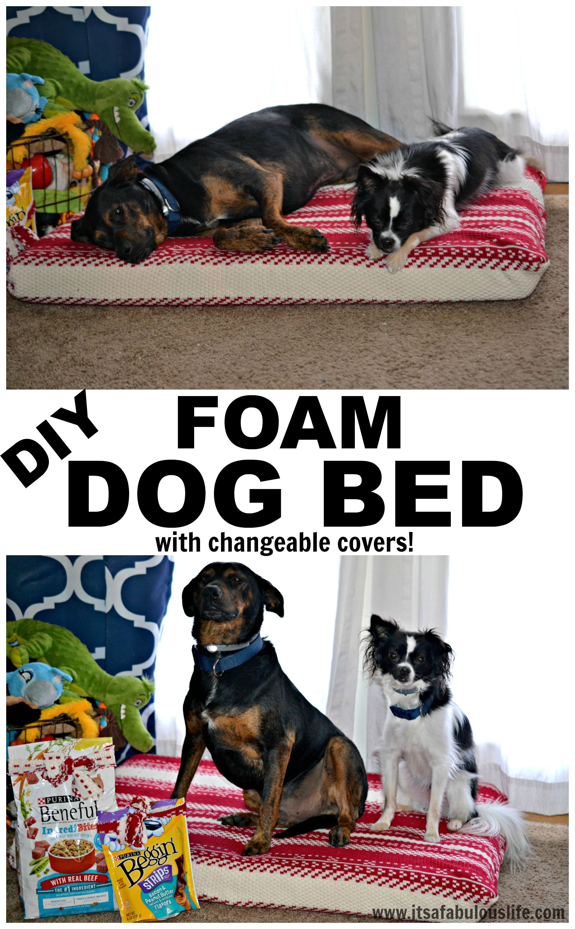 DIY Foam Dog Bed Diy dog bed, Dog bed, Dogs