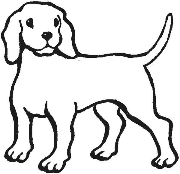 Line Drawing Pet Animals : Outline of a dog cliparts drawing pinterest