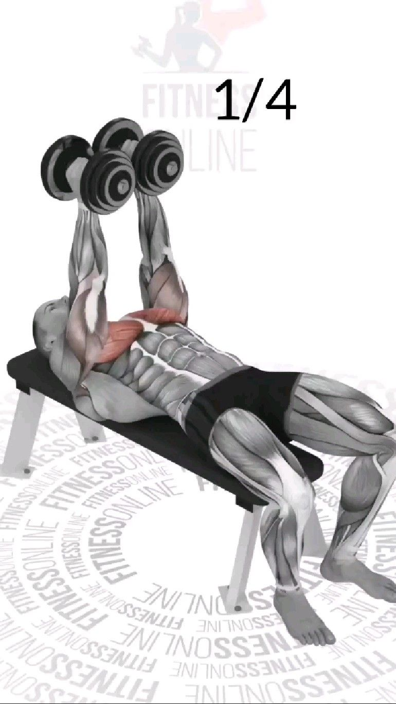 Chest Workout #chestday #chestworkout #pecworkout