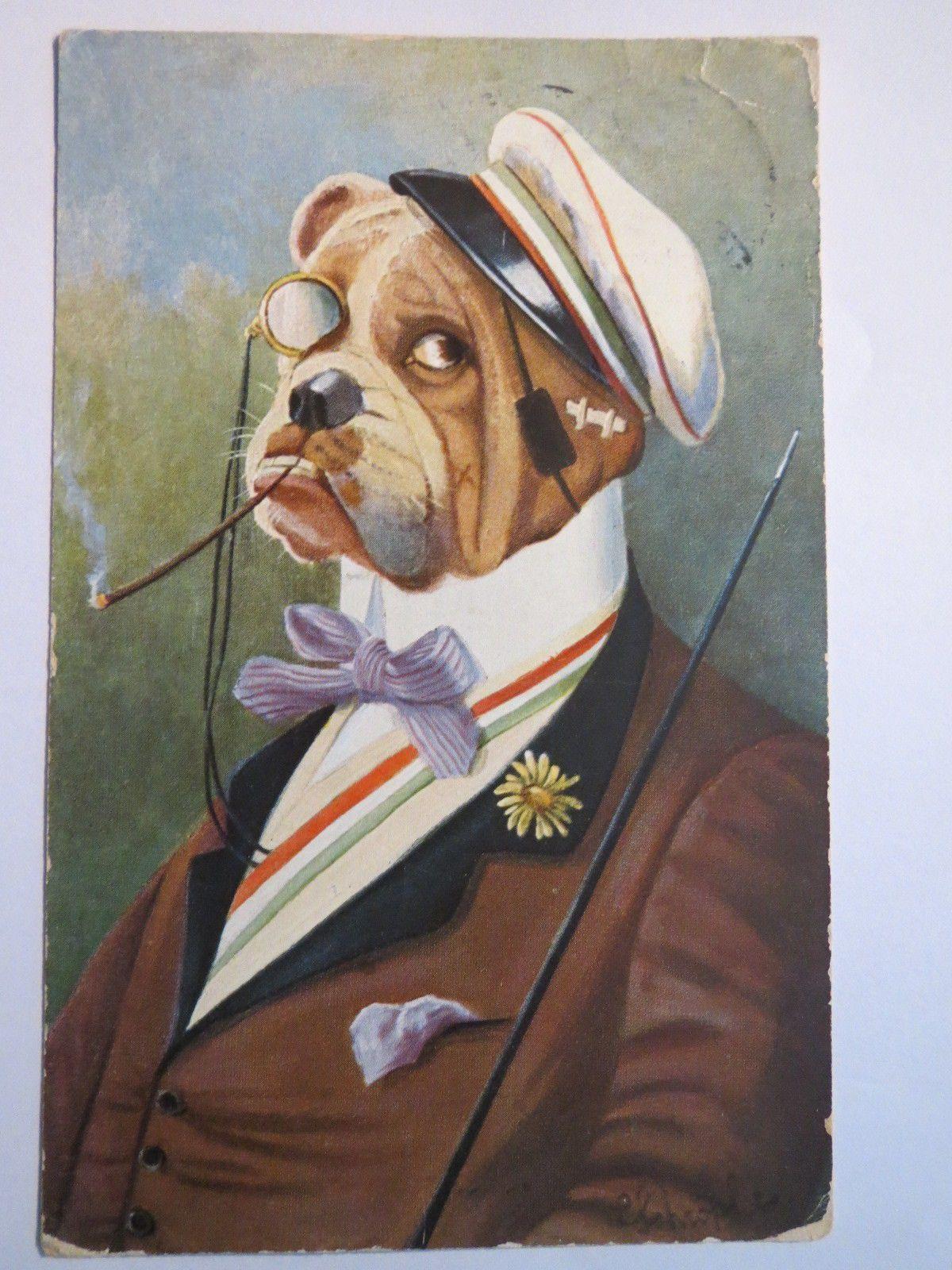 Karikatur Hund Mensur Humoristische Hunde Bulldogge ALS Studiosus ...