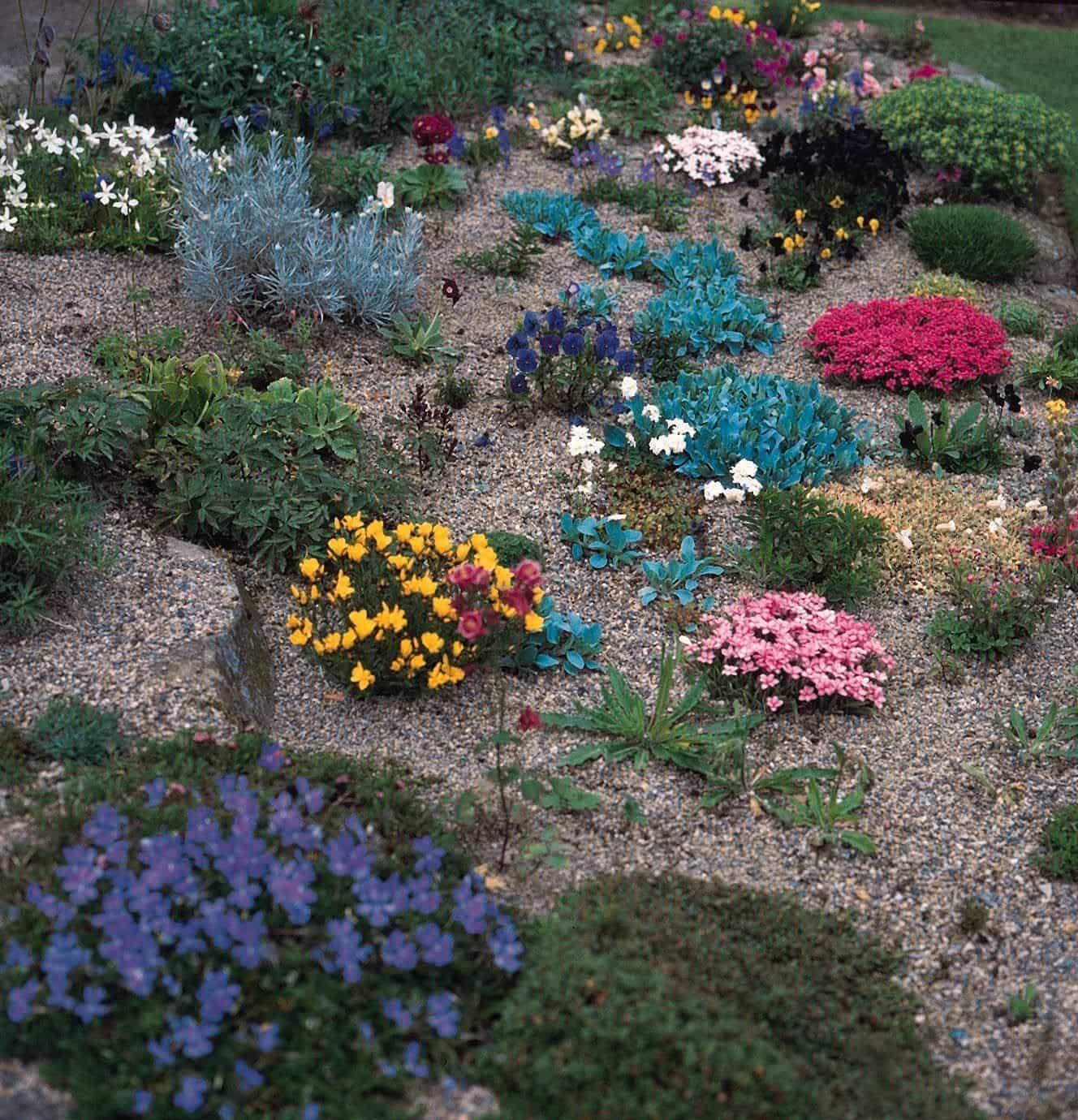 28 how to plant up an alpine trough alpine garden