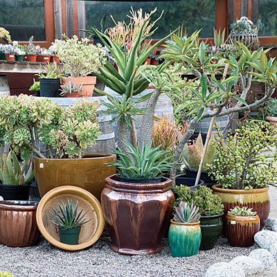Garden Decorations Ideas find this pin and more on garden decoration ideas 5 Great Garden Decorating Ideas