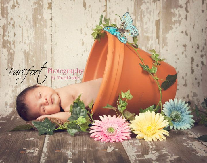 Babyzimmer inspiration ~ Baby photography inspiration photo inspiration babies