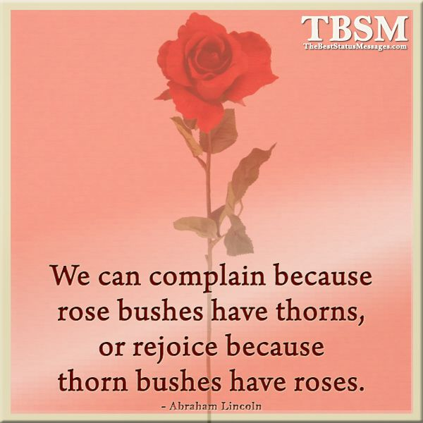 We can complain because rose bushes have thorns or rejoice ...
