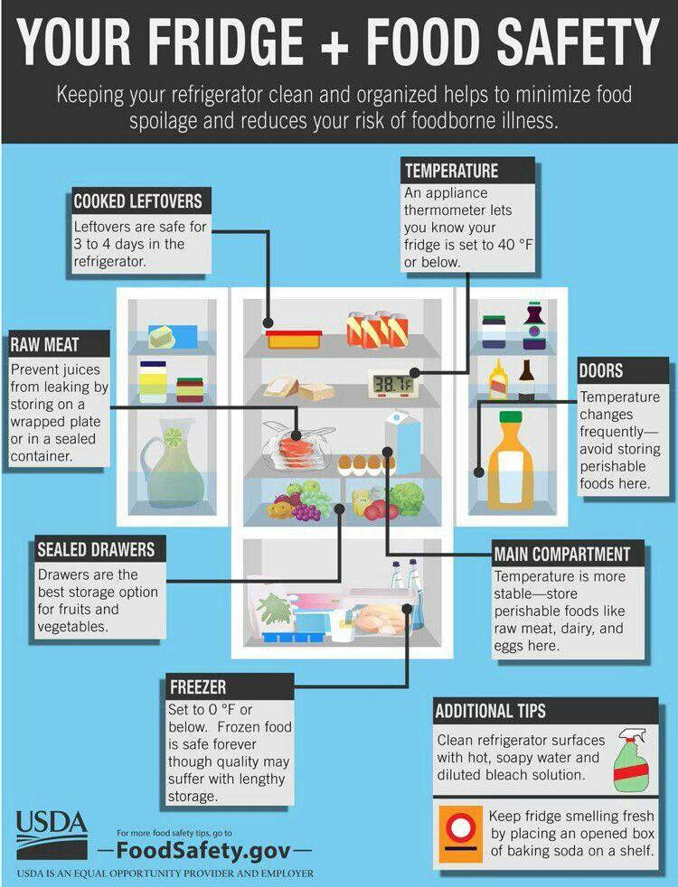 Refrigerator temps Usda food, Food safety tips, Food