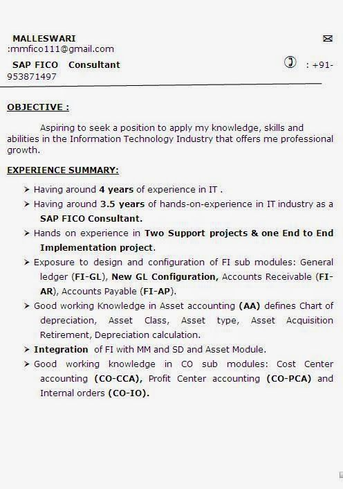 curriculumvitae Sample Template Example ofExcellent Curriculum - sap fico resume sample