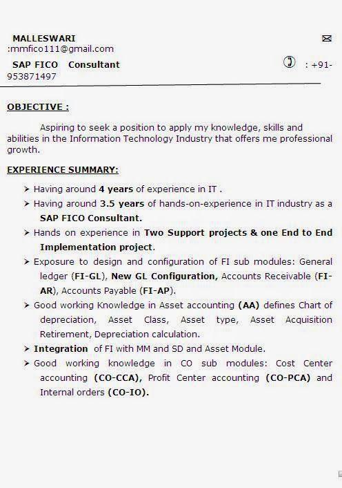 curriculumvitae sample template example ofexcellent curriculum vitae