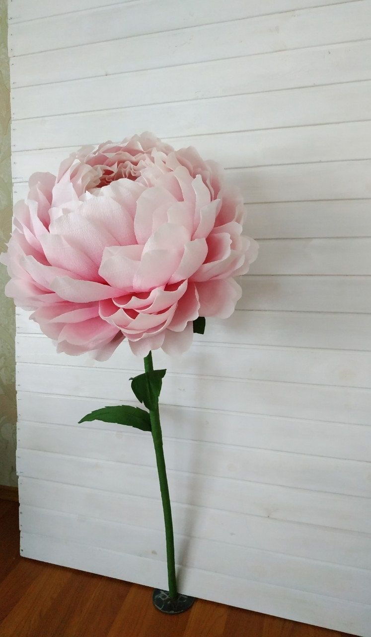 Duze Papierowe Kwiaty Gigantyczne Papierowe Kwiaty Papierowe Etsy Etsy My Wedding Decor