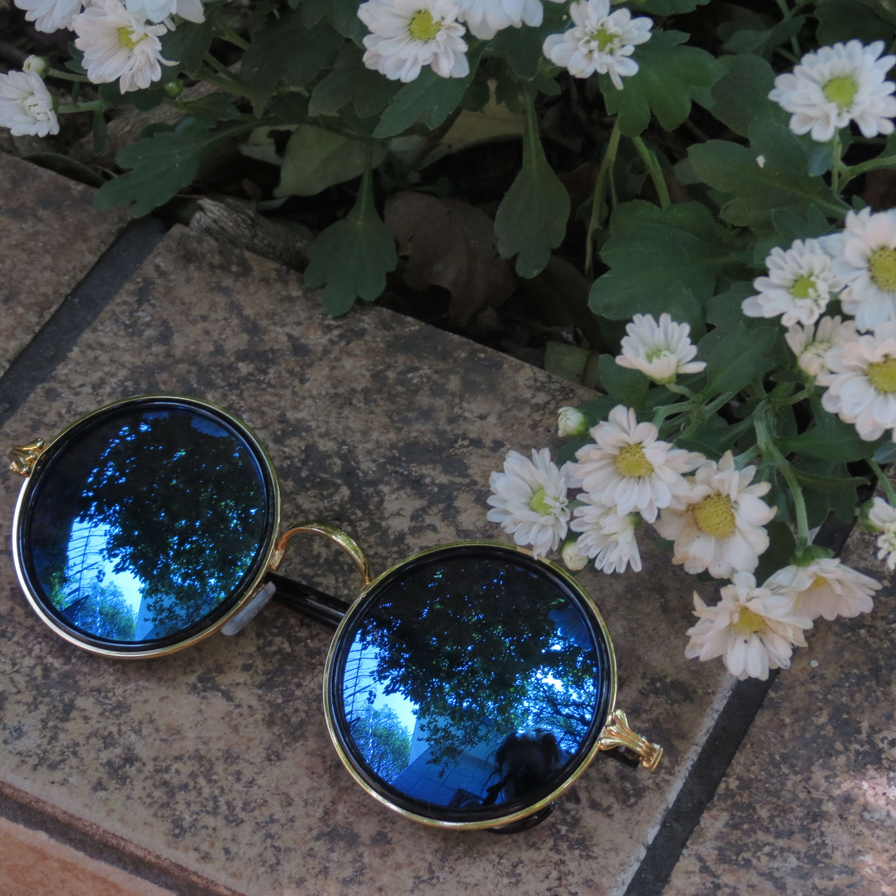 POR TRÁS DESSA LENTE....   Sunglasses   Pinterest   Óculos e Acessórios 5b20977025