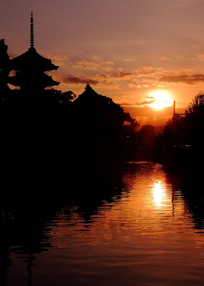 """the crack of dawn"" Toji Temple,Kyoto"