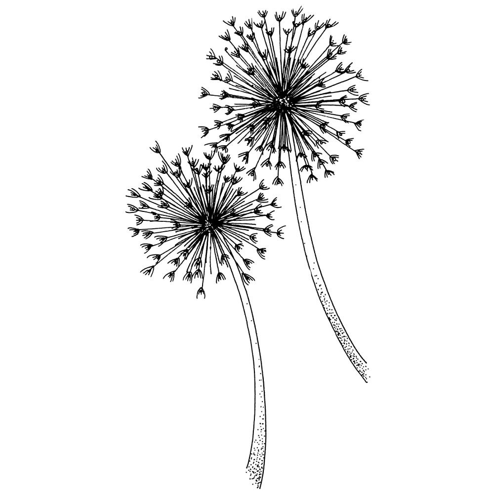 Free Stencil Designs And Rubber Stamps Dandelion Penny