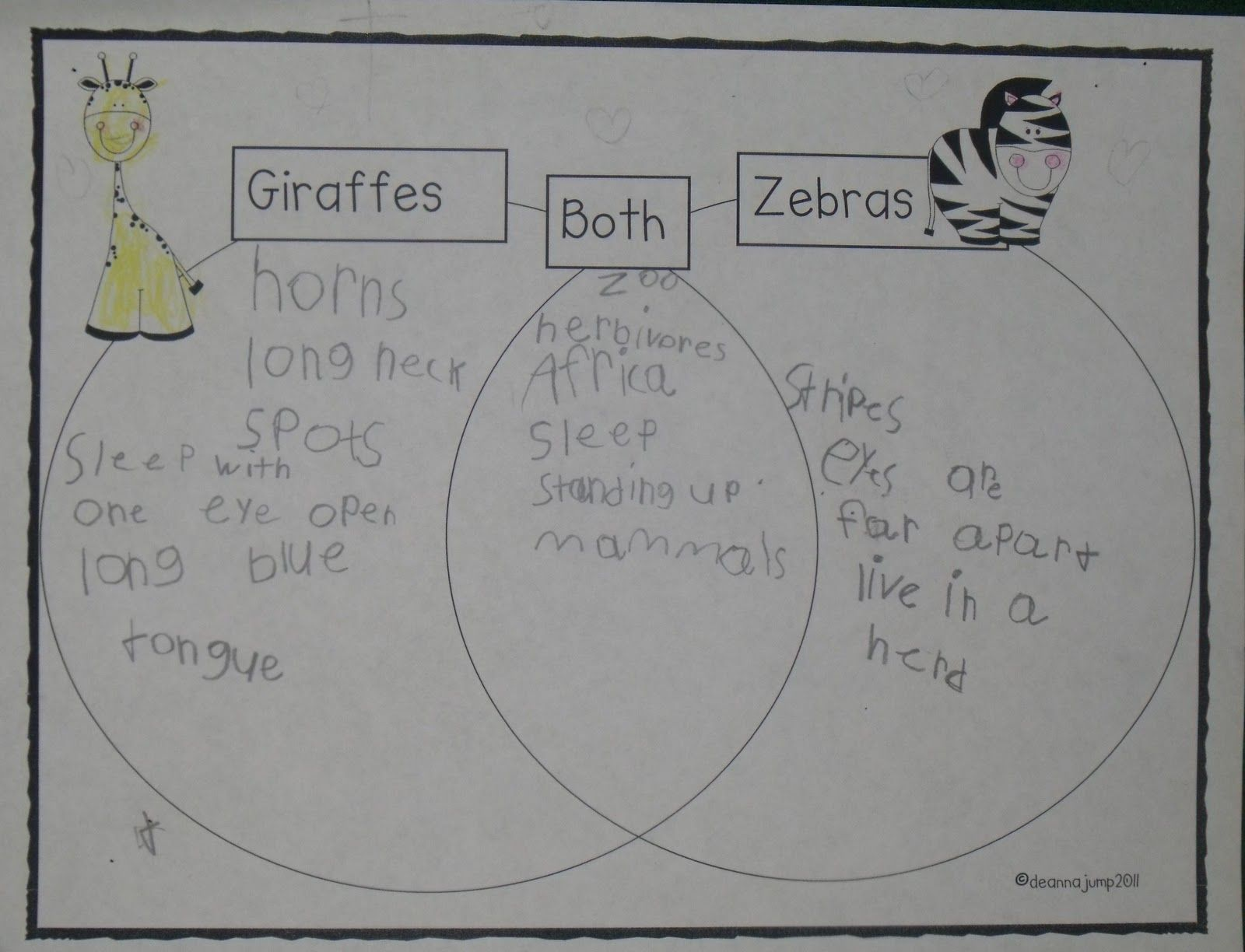 Zoo Venn Diagram Comparing Giraffes And Zebras