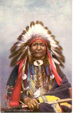 Chief Black Chicken