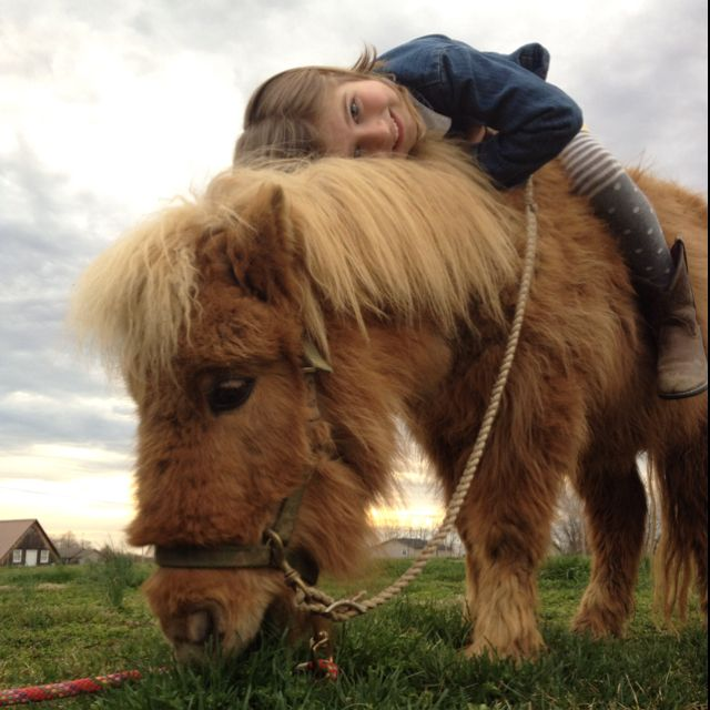A pony is a girl's best friend